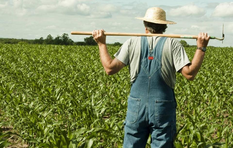 Slikovni rezultat za poljoprivrednici